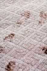 muddy footprints2