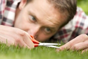 """""""Man with shear on grass, ocd"""""""